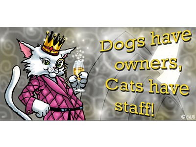 Dogs Have Owners Cats Have Staff Witchy Sign