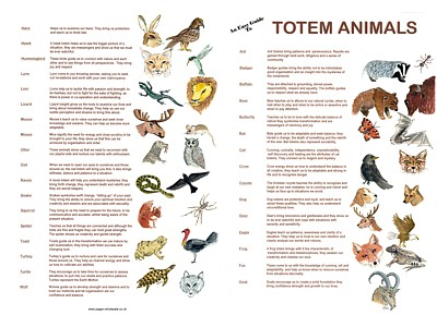 Totem Animals Easy Guide Poster