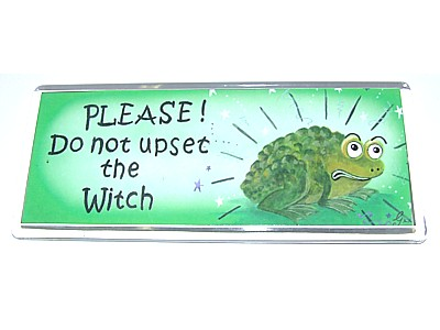 Please Do Not Upset The Witch Magnet