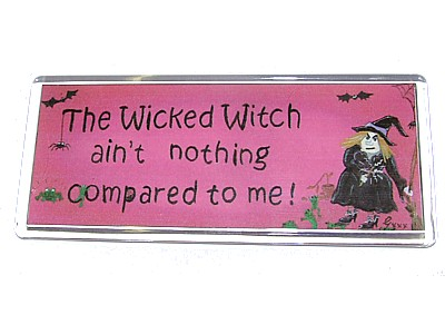 The Wicked Witch Ain't Nothing Compared To Me Magnet